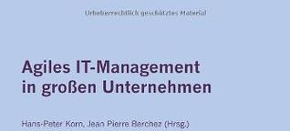 Agiles IT-Management in großen Unternehmen