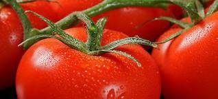 Richtige Ernährung gegen Rheuma