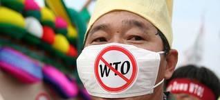 Die WTO: Ein unkontrollierbarer Gigant?