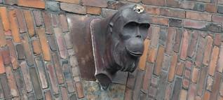 Tiere erzählen Kölner Geschichte