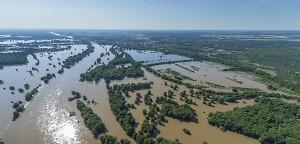 Das Ziehharmonika-Prinzip - Überschwemmungsökologie an der Elbe