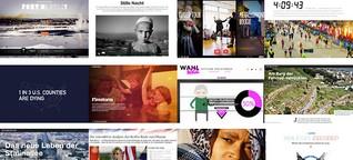 Die 12 besten Multimediareportagen 2013