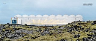 Reportage: In Island wächst die Schönheit.pdf