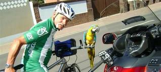 Radsport mit Papagei - ein Gelbbrustara auf großer Tour