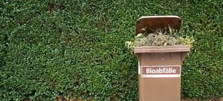 Umfrage: 87 Prozent der Städte und Kreise haben Biotonne eingeführt