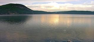 Big Data gegen Algen: In den USA entsteht der intelligenteste See der Welt - WiWo Green