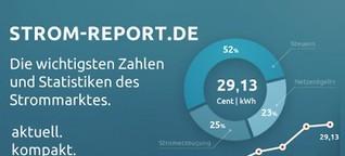 Strom-Report | Statistiken und Infografiken aus den Bereichen Energie und Umwelt