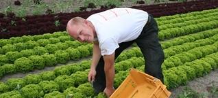 """Ehec-Angst: """"Unsere Ernte ist sauber"""", stern.de"""