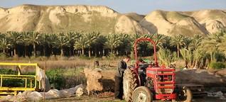 Ökotourismus in der israelischen Siedlung