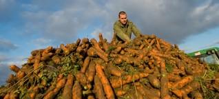 Unperfektes Gemüse erobert den Markt
