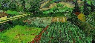 Vincent van Gogh - Spät berufen, früh vollendet