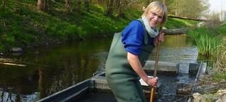 Gutachten für den Naturschutz: Die Krötenzählerin - SPIEGEL ONLINE