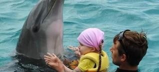 Ailina hat einen Delfin zum Freund