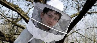 Den Umgang mit Bienen lernen