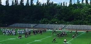meine-NFL.de - Ersatzdroge GFL Berlin Adler