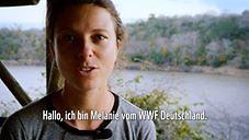 WWF Deutschland - Timeline | Facebook