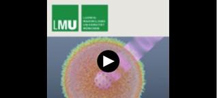 Die unsichtbare Revolution - Nanoteilchen in der Krebstherapie - LMU München