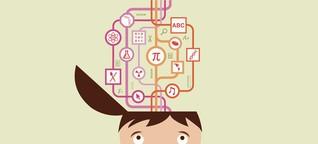 Software soll Abschlüsse von Schülern vorhersagen - und verbessern