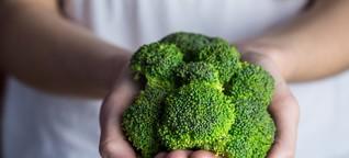 Hybridsaat & Patente: Wie Monsanto & Co. unser Essen kontrollieren - Erschreckende Entwicklung