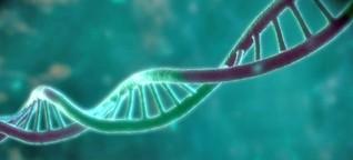 DNA als Datenspeicher