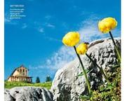 Frühjahrstour: Alpengarten auf dem Schachen