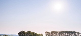 Regionalwert AG Rheinland - Vom Acker bis zum Teller