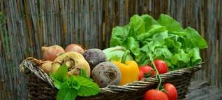 Im Foodtruck Essen retten