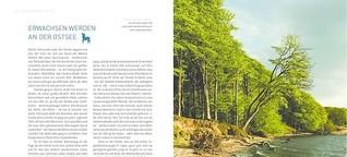 »Erwachsen werden an der Ostsee« für National-Geographic-Buch »Deutschlands Küsten und Inseln«