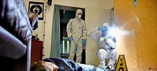 Kriminaltechnik: Mikroben verraten die Täter