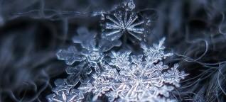 Lebenslauf einer Schneeflocke