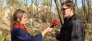 Illegale Mülldeponien in Brandenburg