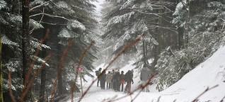 Schneeschuhtour im Schwarzwald: Ab in die Wildnis
