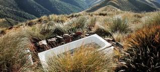 Neuseeland: Crib statt Camper, Zeit Online