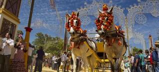 Fest der Pferde   Forum - Das Wochenmagazin