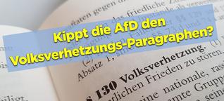 """+++Exklusive Recherche+++ Die AfD will den Volksverhetzungs-Paragraphen ändern - um """"Biodeutsche"""" zu schützen."""