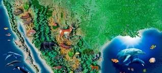 Mexiko: Gesetz über Biodiversität bedroht Natur und indigene Gemeinden