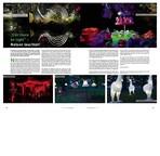 Nelson_Light_Festival.pdf