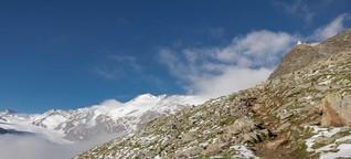 Auf der Spur des Gletscherflohs
