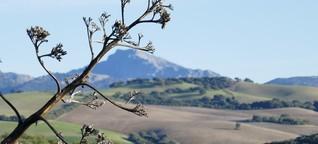 Andalusiens grünes Herz: Die Sierra de Grazalema