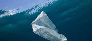 Müll als Rohstoff: Plastiksammeln im Meer soll Geld einbringen