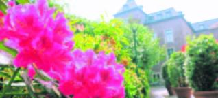 Pläne für Landesgartenschau 2026 in der Region: Wieso Willich Gartenschau nicht will