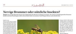 Nervige Brummer oder nützliche Insekten?