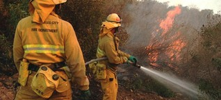 Brände in Kalifornien - Empörung über Trumps Kritik am Forstmanagement