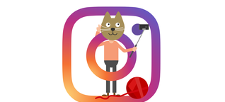 Rich Cats of Instagram