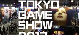 Tokyo Game Show 2017: Die spannendsten Kuriositäten der Messe! | ProSieben Games