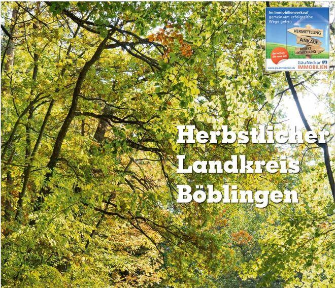 Sonderveröffentlichung KRZBB  - Herbstlicher Landkreis Böblingen