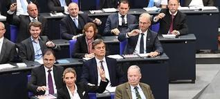 AfD im Bundestag: Topthema Ausländer