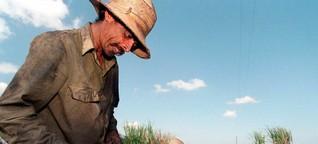 Tod im Zuckerrohrfeld
