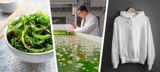 Algen im Essen, in Kleidung und Kosmetik - das Material der Zukunft?