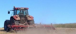 Dürre 2018: Wenige Bauern wollen Beihilfe vom Ministerium